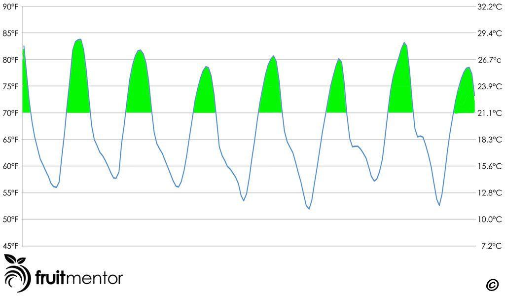 Pronóstico de Temperatura Semanal Favorable para Injertar Limoneros