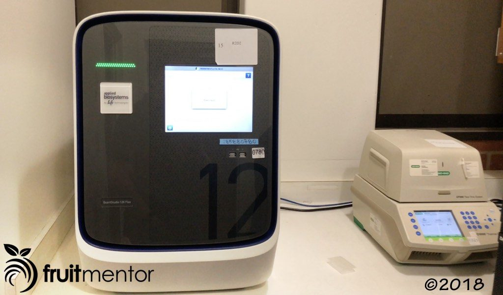 High-tech laboratory equipment detects fragments of DNA from disease-causing organisms.