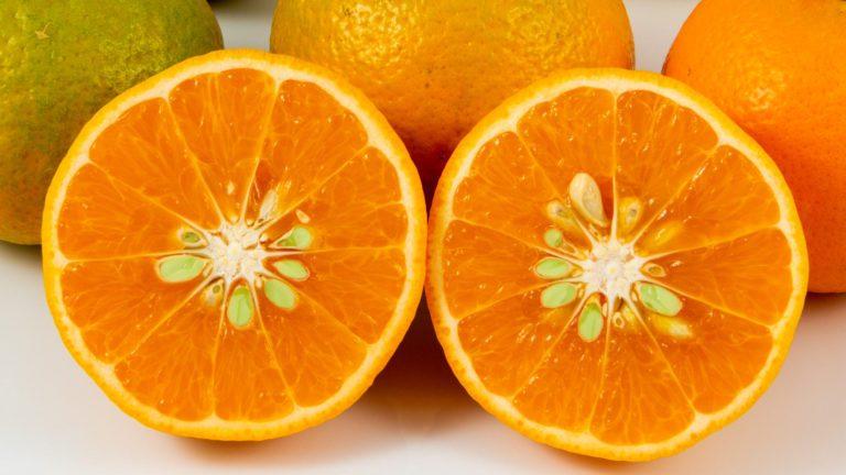 USDA 6-15-150 Mandarin Orange